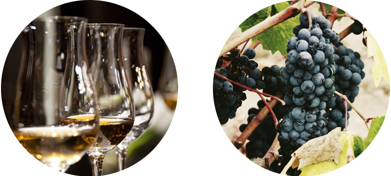 fifield_wine-and-dine-side-by-side-circles-master_1-2rk